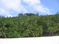 Grand Anse North Island 006.jpg