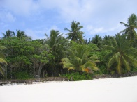 Grand Anse North Island 007.jpg